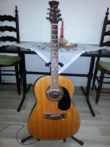 Harmony 6-string